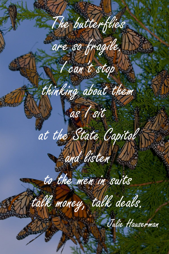 Unspoiled  Monarchs