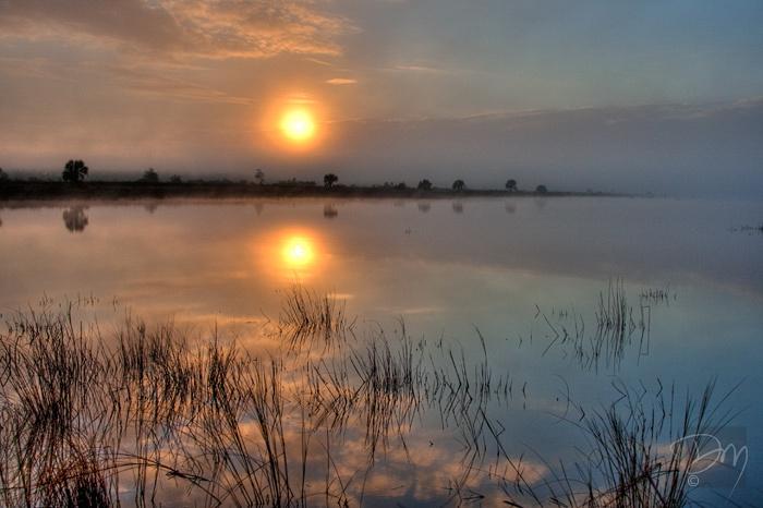 St. Marks Sunrise Mist