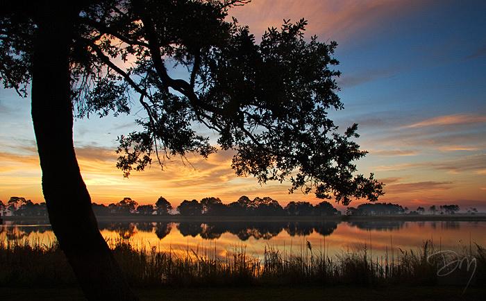 Oaken Sunrise