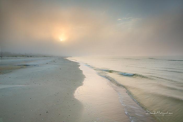 Gulf_Mist