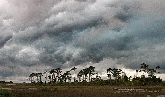 Hue of Storm