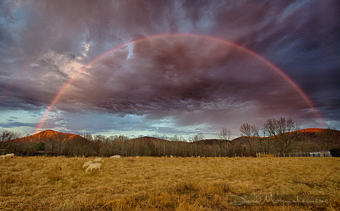 Pastoral_Rainbow