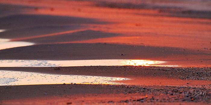 Last Rays on Beach