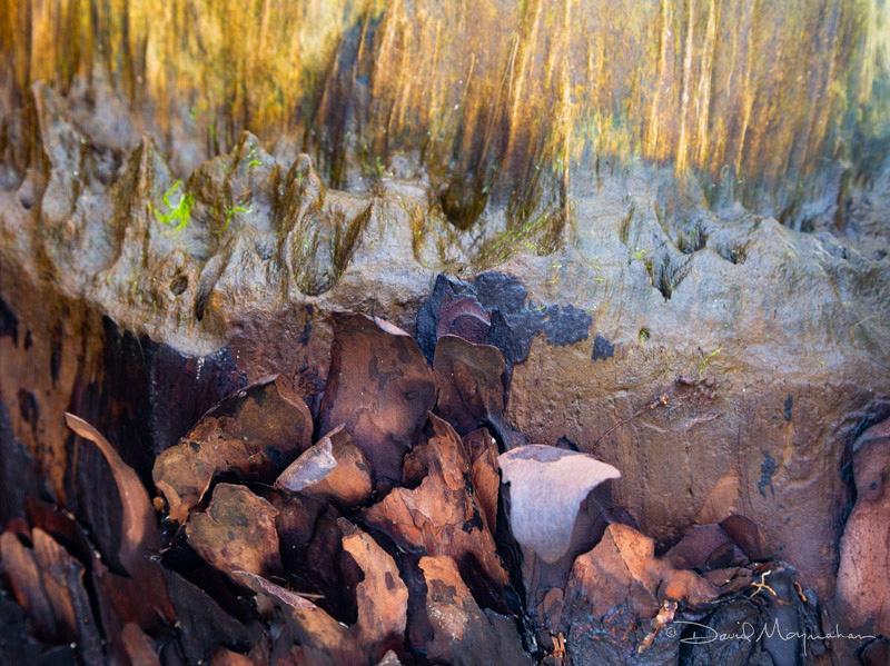 Erosion Study