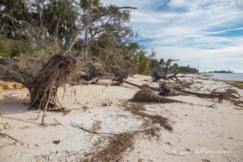 Hurricane Erosion
