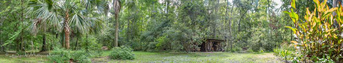 Wood Shed Pano-Rat Snake
