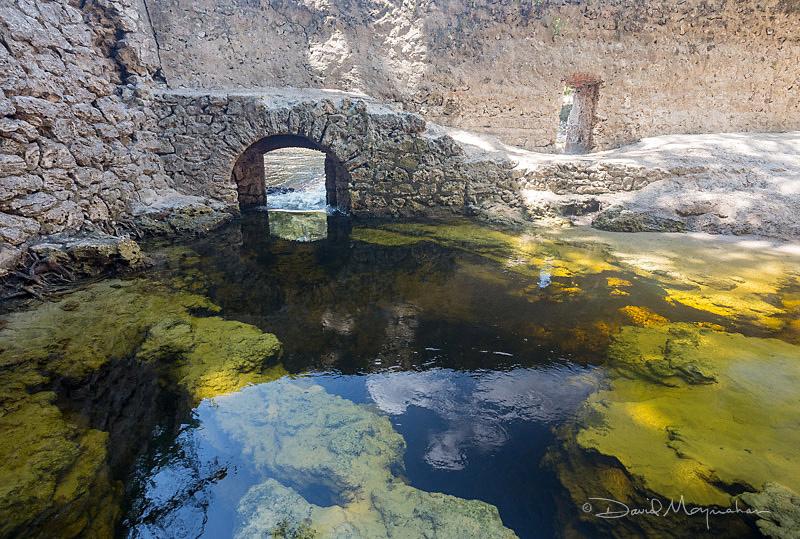 Suwannee Springs Arch
