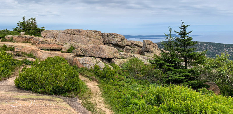 Cadillac Mountain Vista