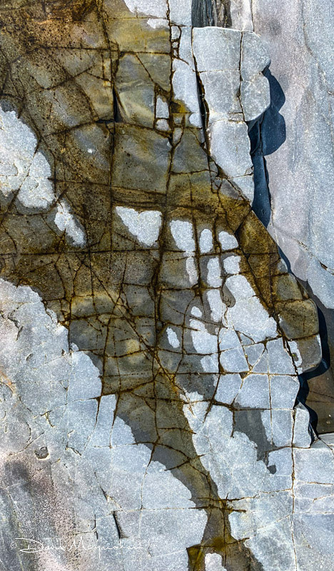 Maine Rocks - ANP Detail 4