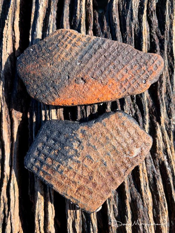 Pottery Chards 1