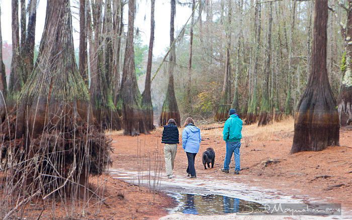 Hiking the Paddling Trail
