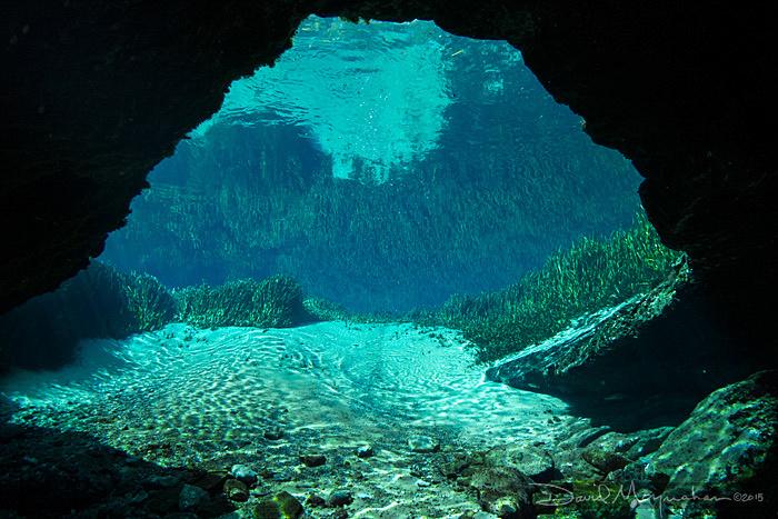Jackson Blue Cavern Vista