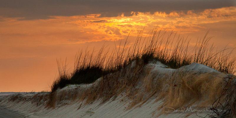 Losing Dune