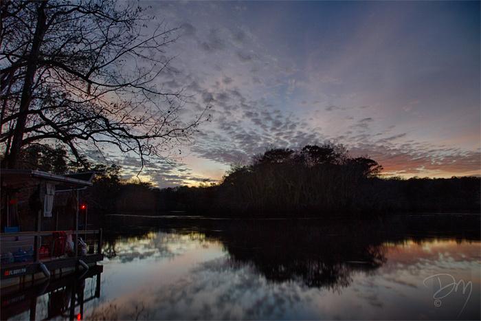 Owl_Cr_Landing_Sunset