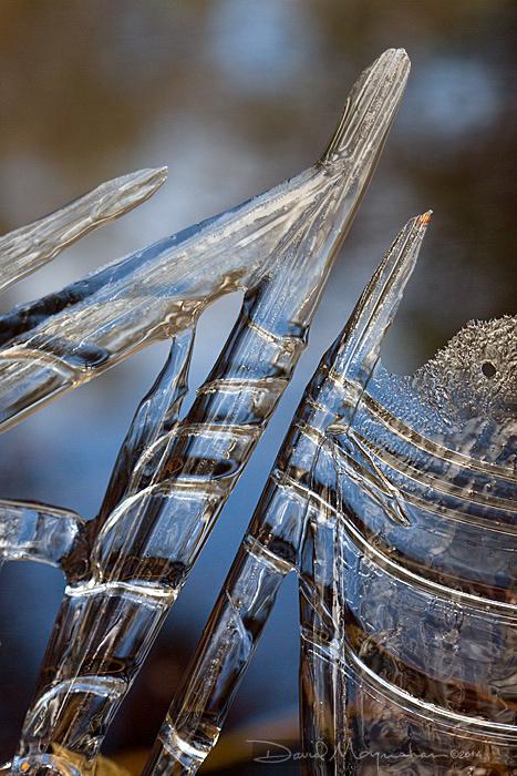 Ice_Harp
