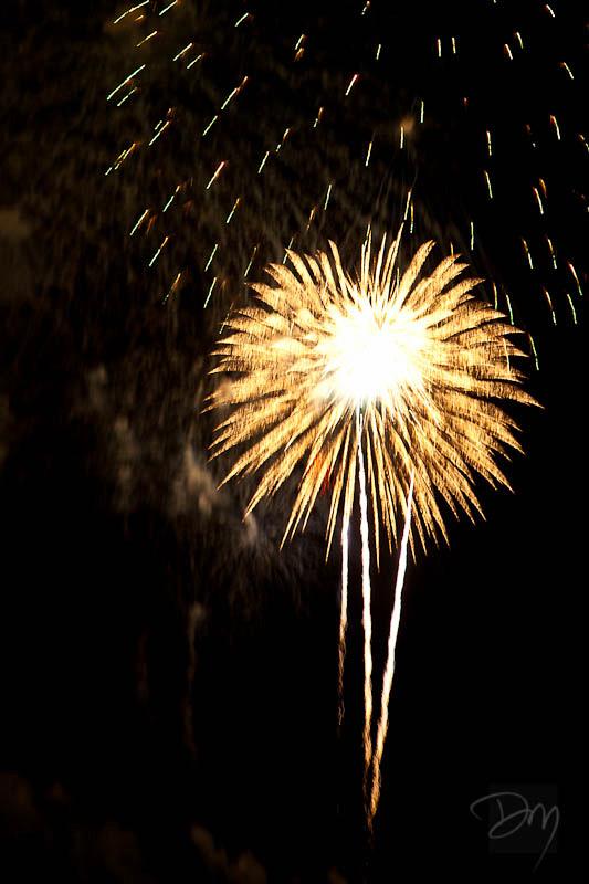 Cocoa_Beach_Fireworks_Palm