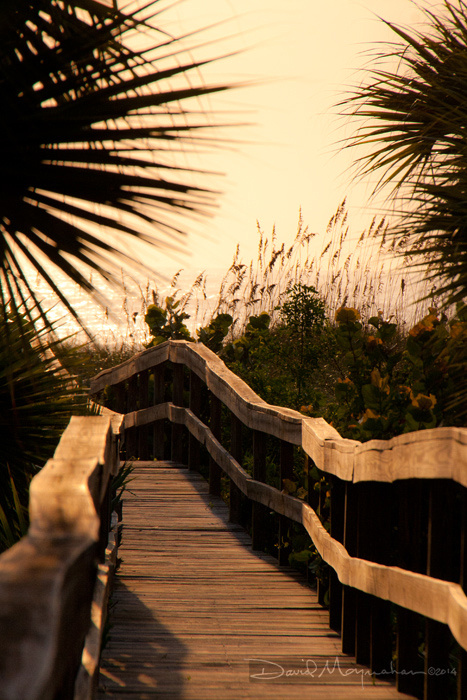 Boardwalk_Sepia_Sunrise