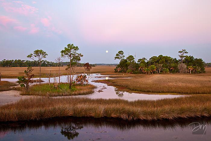 St. Marks Moonset