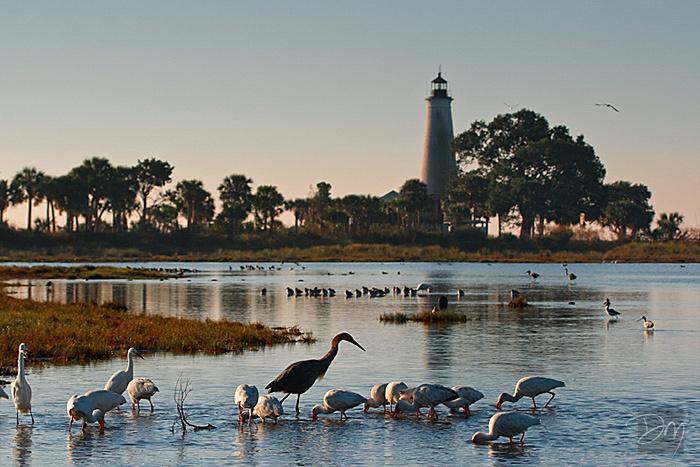 Lighthouse Pond