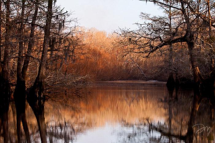 Choctawhatchee River Vista