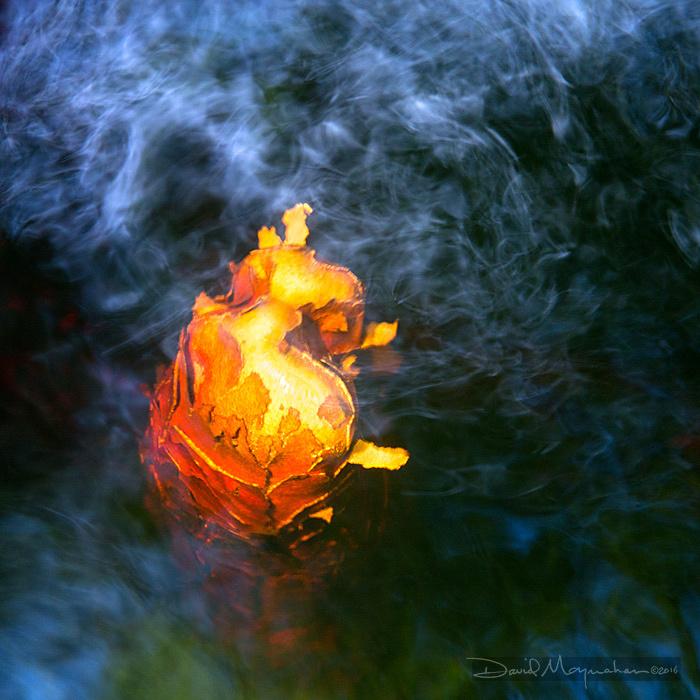 Fire_Water