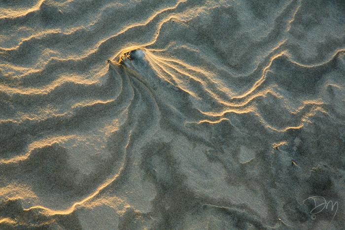 Stormy Sand