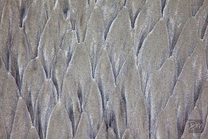 Beach Sands V