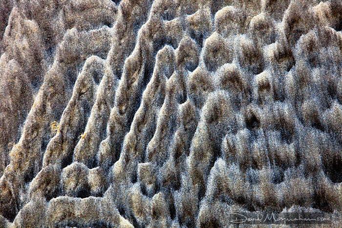 Sandhill Illusion