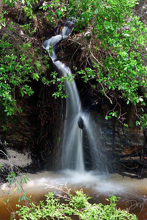 Econfina Waterfall