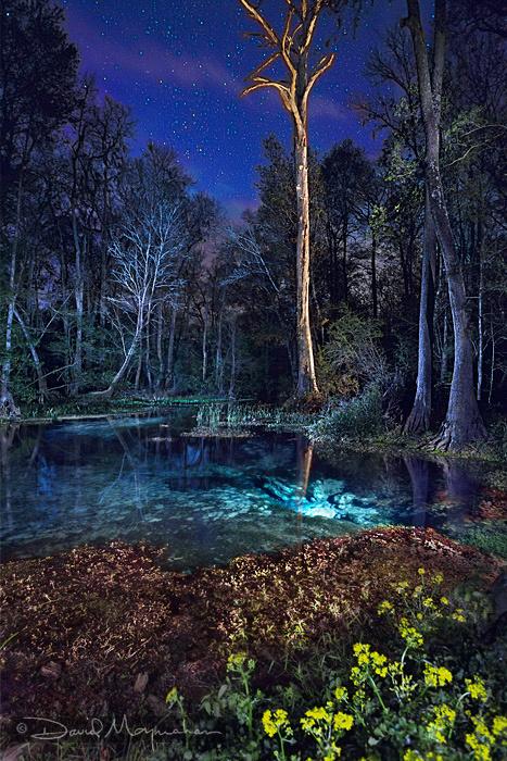 Nightfall on Eden