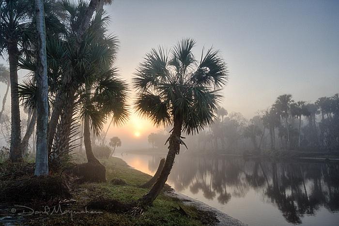 Econ_Sunrise