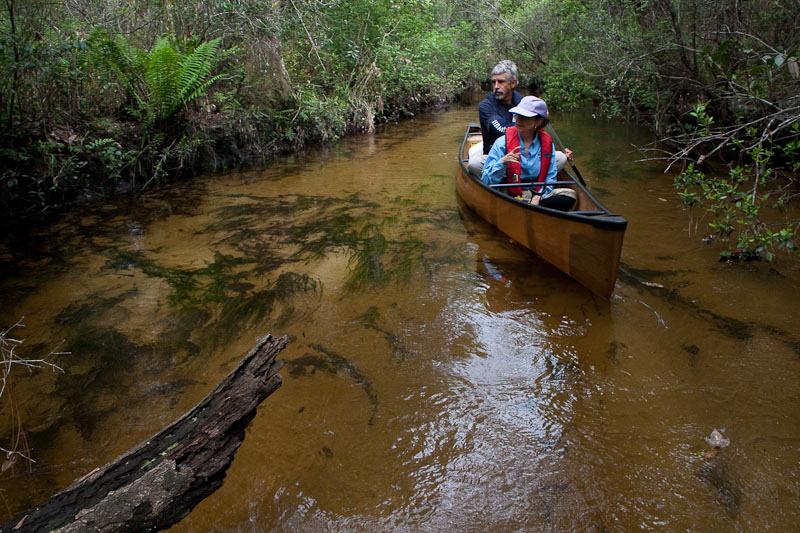 Seven Runs Creek-21.jpg