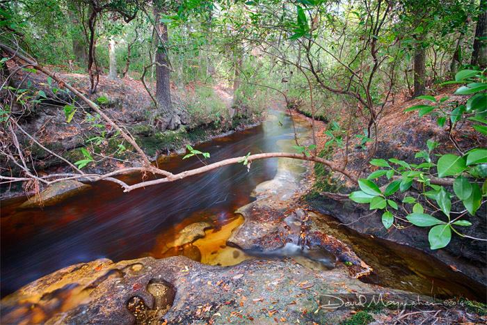Limerock Creekbed