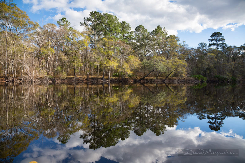 Reflections on Satilla