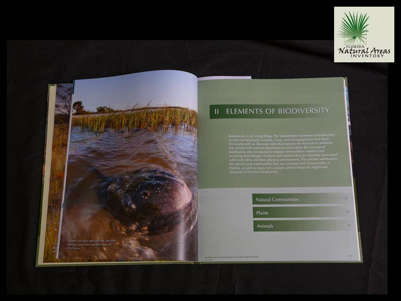 Atlas of Floridas Natural Heritage Biodiversity Landscapes Stewardship and Opportunities
