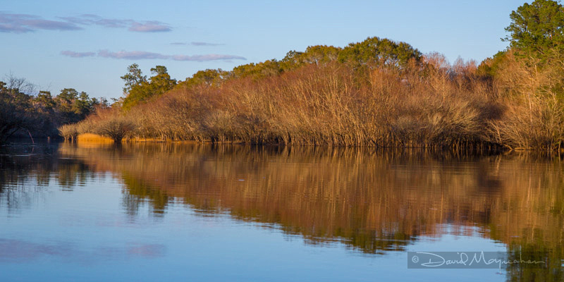 Reflections on Satilla Pano