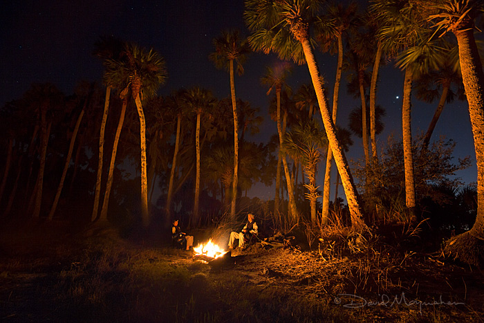Camping Neath the Palms