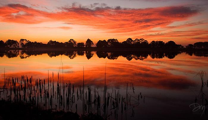 Picnic Pond Sunrise
