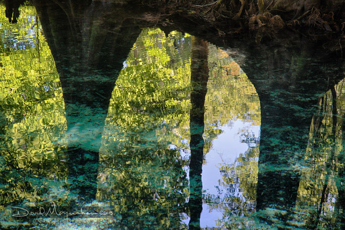 Reflected Arch