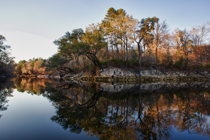 Reflections on the Suwannee
